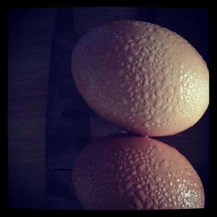 eggs_dacheux